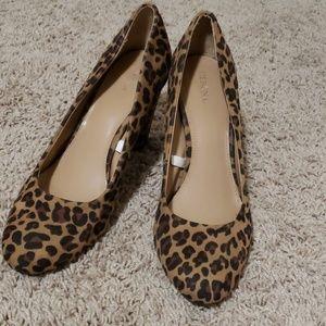 High Heels Leopard Print
